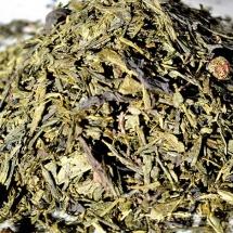 JPG18 thé vert pêche abricot